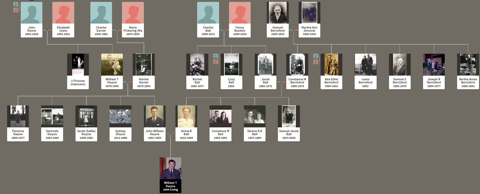 W. Dwyne - Personal lineage with pictures.